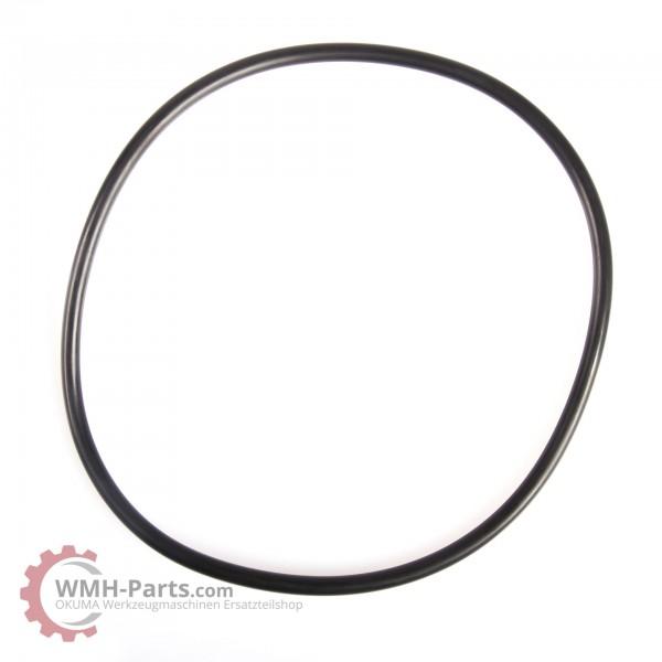 P150 O-Ring