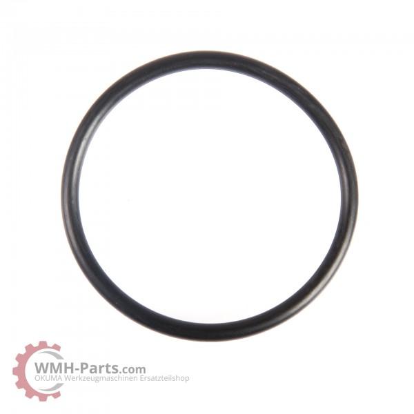 G45 O-Ring